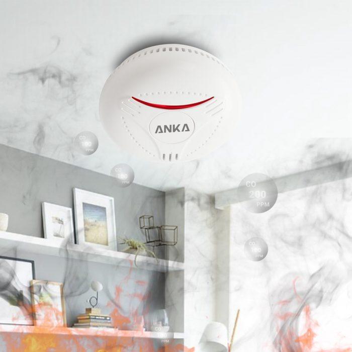 independent smoke alarm
