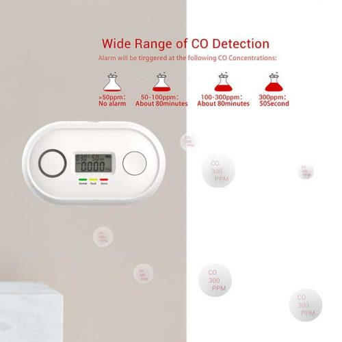 10 years carbon monoxide alarm